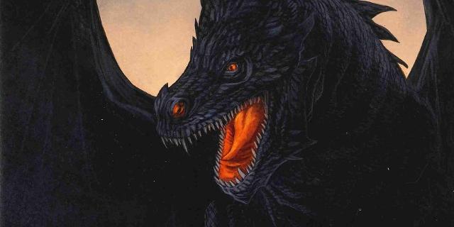 Bild aus Buch Drachen