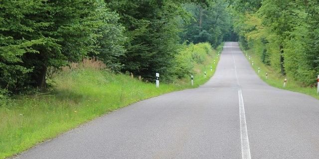 Eine leere Landstraße durch den Wald