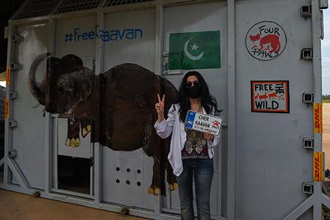 Cher Elefant