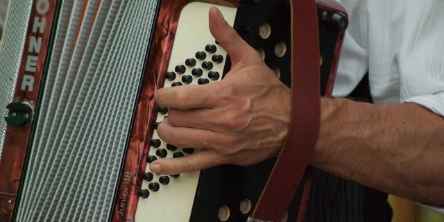 Akkordeon Close Up