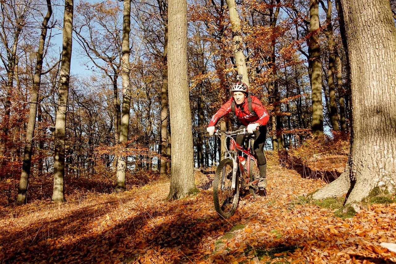 Chris Cummins fährt mit dem Mountainbike im Wald