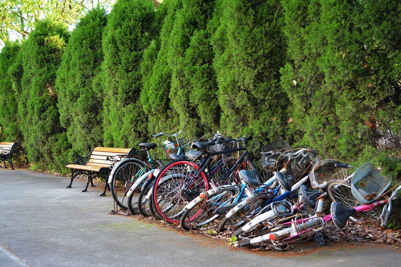 Abgestellte Fahrräder in einer Reihe, die zu einer Seite schon umgekippt sind
