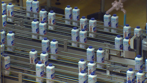 Milch bringt´s - oder nicht?
