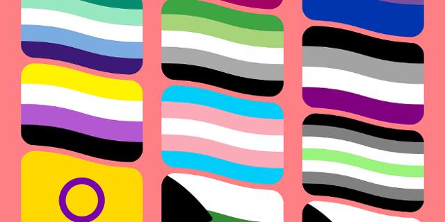 Verschiedene Flaggen von Asexualität, LGBTIQ, Pansexualität usw