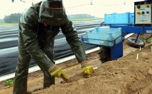 Abgezockt? - Rumänische Erntehelfer auf deutschen Feldern