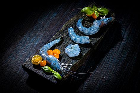 Blaue Garnelen