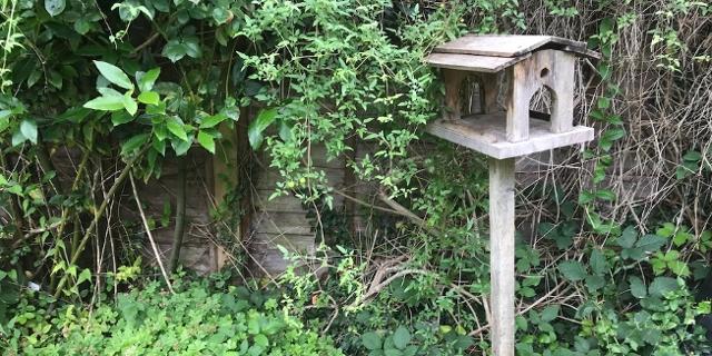 Vogelhäuschen in englischem Garten