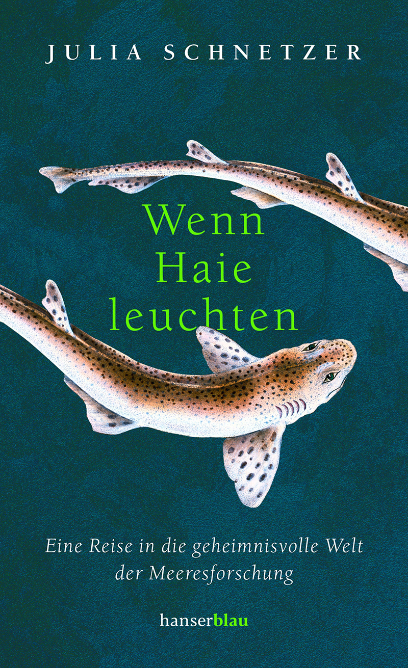 """Buchcover """"Wenn Haie leuchten"""""""