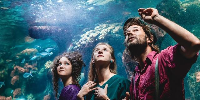 Das Folk-Pop-Trio Alpine Dweller im Haus des Meeres in Wien