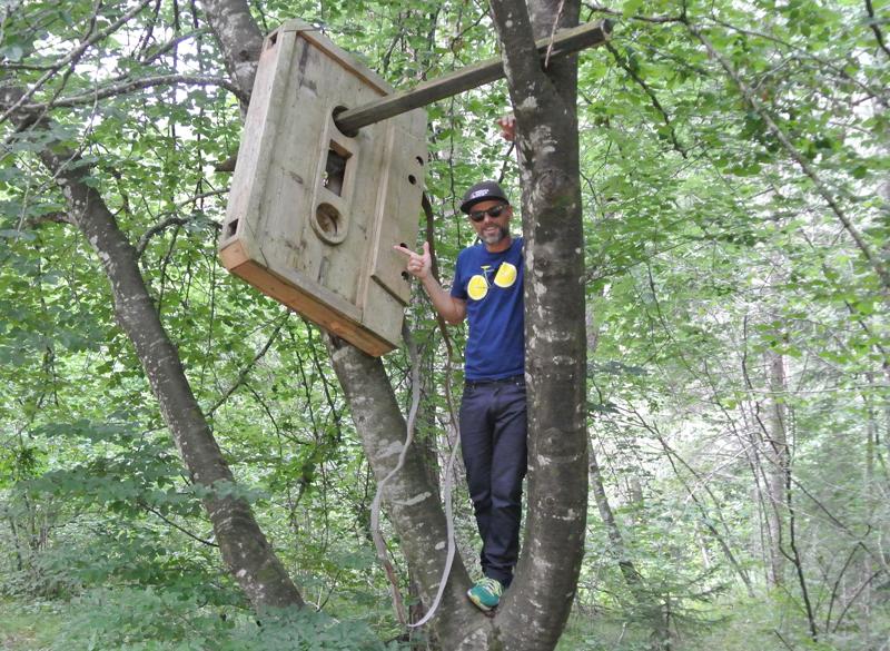 Heinz Reich in den Bäumen