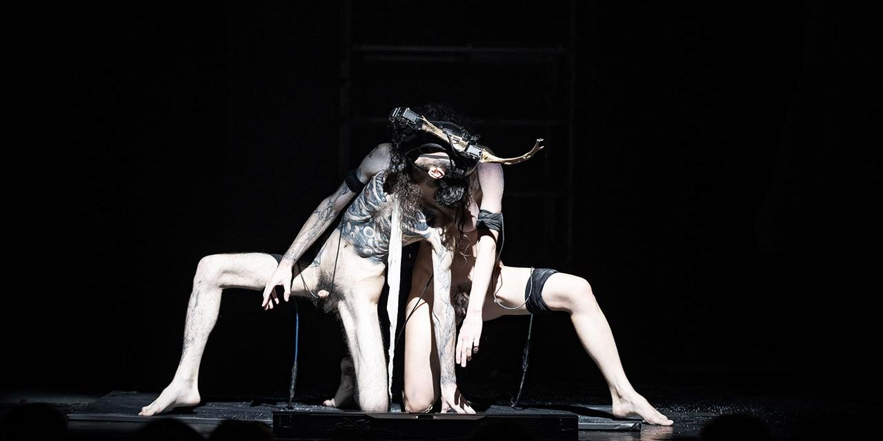 Acts beim Donaufestival 2021: donnarumma